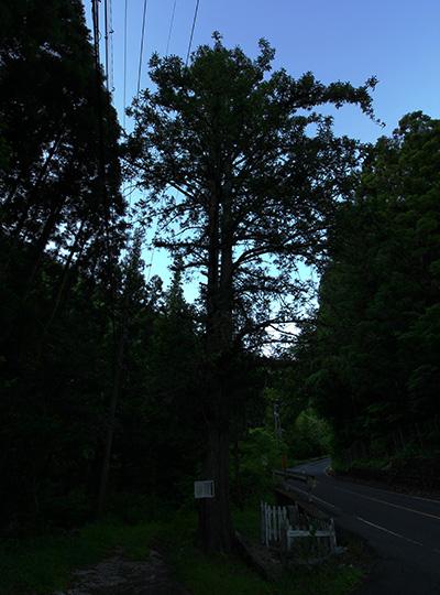 hokketou_14a