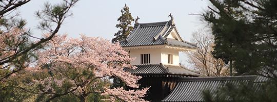岩村城をご存知ですか?
